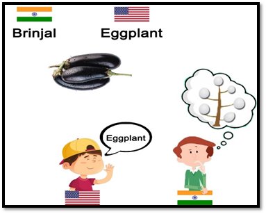 American English VS Indian English Related to Food