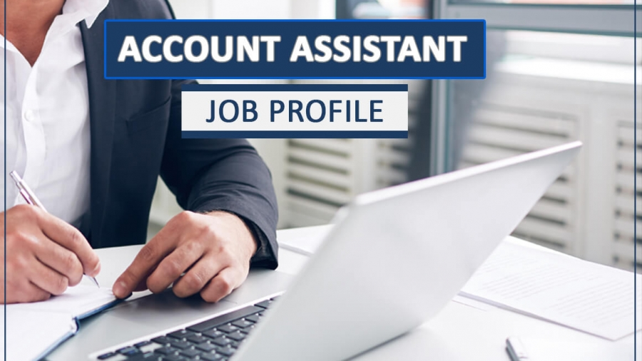 Account Assistant