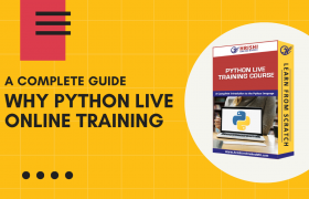 A Complete Guide – Why Python Live Online Training