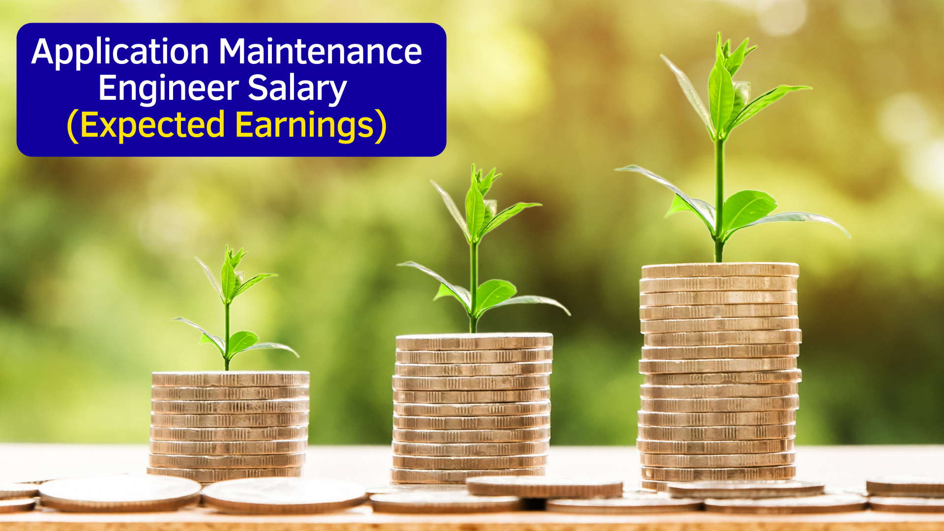Application Maintenance Engineer Salary (Expected Earnings)